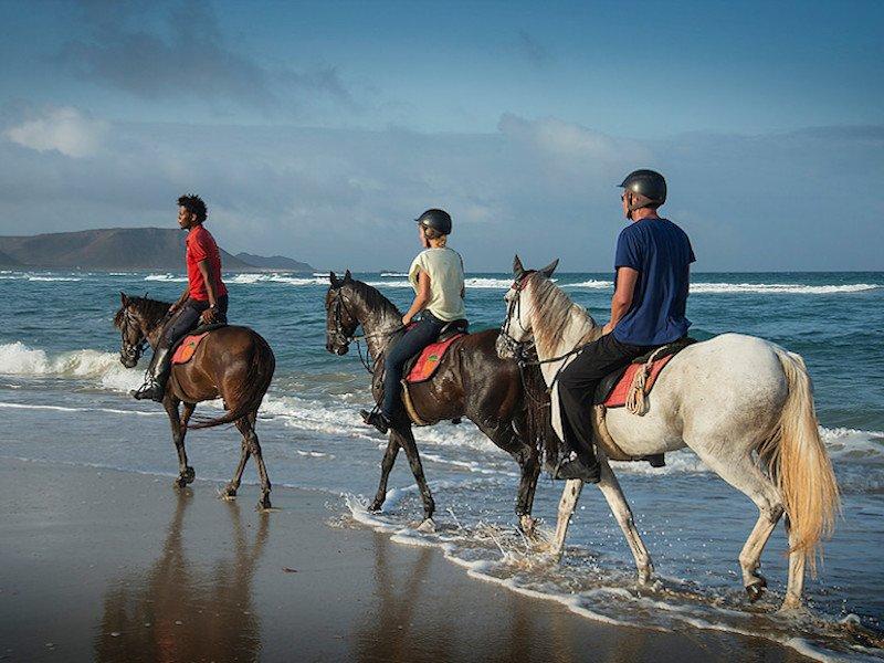 Horse excursions Sal, Cape Verde
